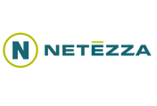 Netezza Icon